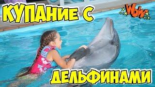 Download Плавание с дельфинами в дельфинарии НЕМО Одесса в День Рождения. Children Swim with Dolphins. Video