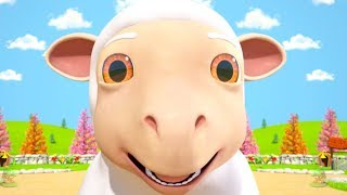 Download Mary Had a Little Lamb Nursery Rhyme | Songs for Kids by Little Treehouse Video