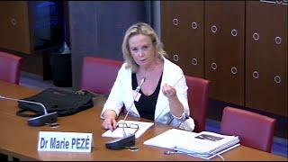 Download Dr Marie Pezé - Observations sur le burn out Video