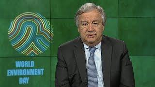 Download Mensaje del Secretario General en el Día Mundial del Medio Ambiente Video