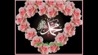 Download nabi amaan ahlusuna waljameeca Video