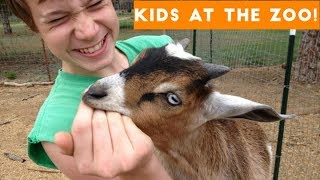 Download Cutest Kids at the Zoo Compilation 2017 | Funny Pet Videos Video