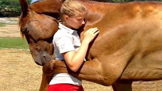 Download 10 Animals That Saved Peoples Lives Video