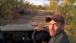 Download Safari Live : James takes us on a wild ride ( Funny ) June 29, 2016 Video