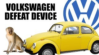 Download Volkswagen Gassed Monkeys To Prove Diesels Are Clean Video