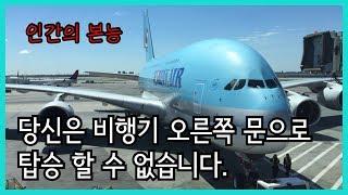 Download [궁금증] 비행기 탑승 시 왼쪽 문으로만 타는 이유 / 오른 문 이용자를 찾습니다 Video