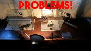 Download PROBLEMS! - Atta sexdens #29 Video