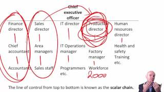 Download CIMA E1 Organisational Structure Video