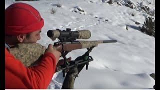 Download Wıld Boar Huntıng. Domuz Avı.Muhteşem Atışlar Video