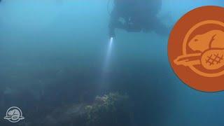 Download La découverte du HMS Erebus Video