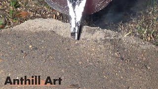 Download Casting a Bigger Fire Ant Colony with Molten Aluminum (Cast #057) Video