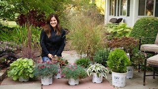Download Show & Tell - Plants That Look Great in Late Fall // Garden Answer Video