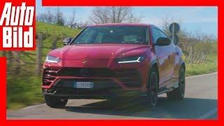 Download Lamborghini Urus (2018) Details/Erklärung Video