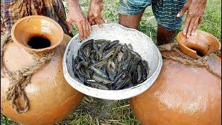 Download Unusual Fishing | Trapping Huge Country Fish Using Big Pottery Pot | Big Pot Fish Catching Video
