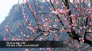 Download Vietnamese Folk Song - Đào nguyên Video