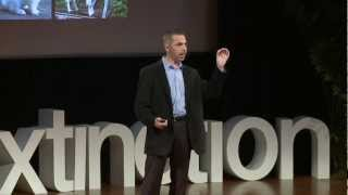 Download The use of cloning and stem cells to resurrect life: Robert Lanza at TEDxDeExtinction Video