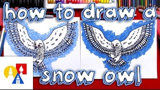 Download How To Draw A Realistic Snow Owl Video