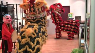 Download Darwin Chung Wah Society Lion Dance Troupe - Blessing of Bling Jewellery and Taylor's Toy Box Video