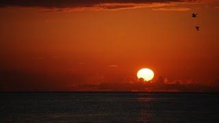 Download Thunderstorm / Sunrise Timelapses - (4K!) - Florida 2015 Video