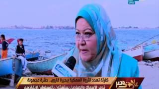 Download على هوى مصر - حشرة مجهولة تهدد الثروة السمكية ببحيرة قارون .. تدمر الأسماك Video