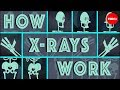 Download How X-rays see through your skin - Ge Wang Video
