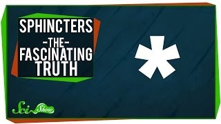 Download Sphincters - The Fascinating Truth Video