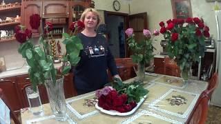 Download Розы. Реанимация. Video