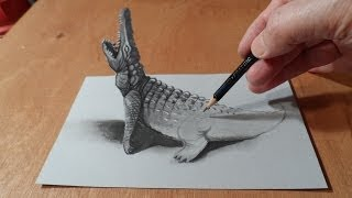 Download How to Draw Crocodile - Drawing 3D Crocodile - 3D Trick Art - Vamos Video
