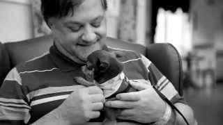 Download St John Ambulance Therapy Dog Program Video