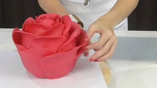 Download EVERYDAY OBJECTS as cakes! - Amazing CAKES Video