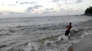 Download gilson pega um robalo de 15 kg Video