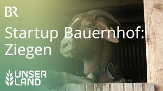 Download Startup Bauernhof: Nach den Schweinen kommen die Ziegen | Unser Land | BR Fernsehen Video