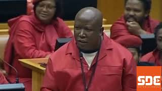Download Seven instances Julius Malema shocked the world Video