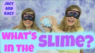 Download What's in the Slime Challenge ~ Jacy and Kacy Video
