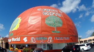 Download The worlds largest Orange and Driving Down the 192 Video