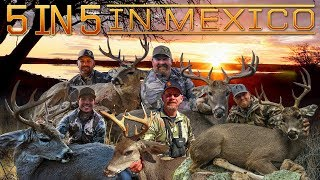 Download Giant Coues Whitetail - 5 In 5 In Mexico Video