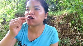 Download Primitive Technology - black spider on rock - Cooking eating delicious Video