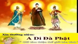 Download Nhạc Niệm PHật, Nam Mô Bổn Sư Thích Ca Mâu Ni PHật-A Di Đà PHật- Quán Thế Âm Bồ Tát Tổng Hợp Video