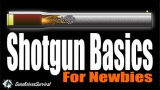 Download Shotgun Basics for Newbies Video