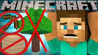 Download If Wood was Rare - Minecraft Video