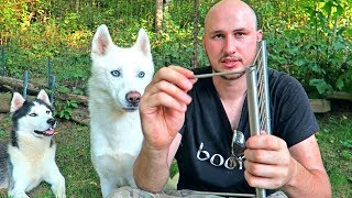 Download 4 Camping Gadgets put to the Test Video
