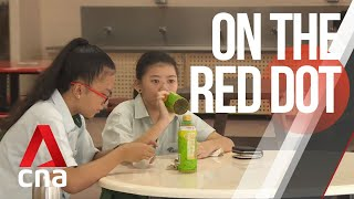 Download CNA | On The Red Dot | S7 E11 - Growing up in a super-sized family Video