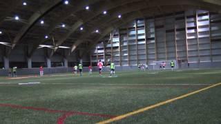 Download Le stade TELUS-Université Laval inauguré Video