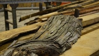 Download Wood-Mizer LT50 Sawmill Sawing Russian Olive Log Into Lumber Video