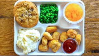 Download These Photos Show Just How Bad School Lunches Really Are in the U.S. Video
