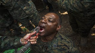 Download 5 Craziest Military Training Exercises Video