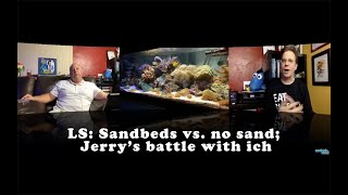 Download Let's discuss sandbeds & ich Video