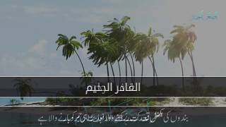 Arabic naat for status|islamic Arabi whatsapp status naat