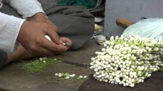 Download Man putting small flowers in a thread and making mala. Video