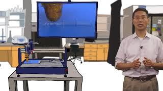 Download Wyss Focus - 3D Organ Engineering Video